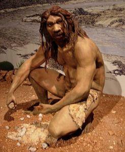 evolution-primitive-man