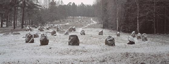 Hunnfeltet, Skjærviken