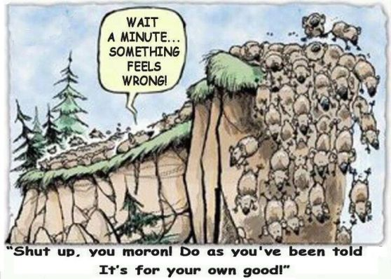 lemmings-at-the-cliff