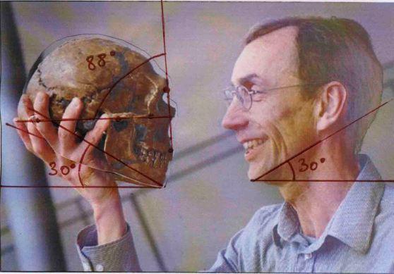neander3